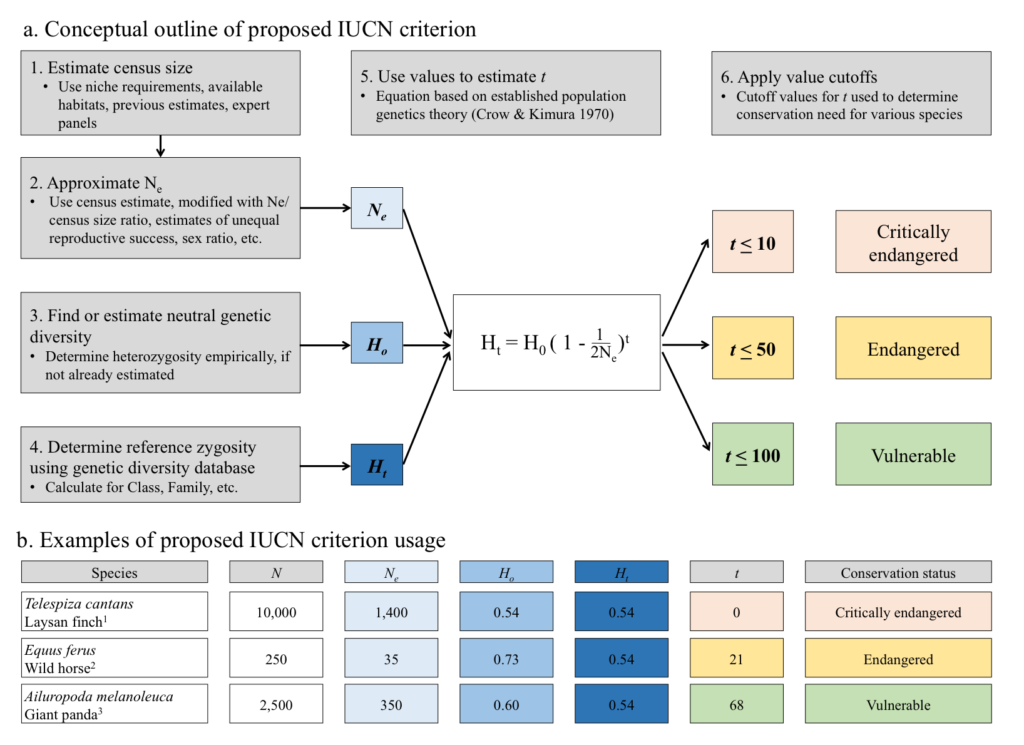 Proposed IUCN criterion (a) and example of usage (b). We proposed estimating census size and effective population size (Ne) in order to determine the number of generations (t) until the species loses heterozygosity below the 25% of values (Ht) gathered in our database of microsatellite studies. The number of generations can then be used as an indicator of conservation need, based on the loss and projected future loss of genetic diversity.